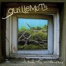 Guillemots: Through the window plane