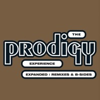 Prodigy: Experience (Expanded incl. b-sides & remixes)
