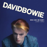 Bowie, David: Who Can I Be Now 1974-1976 (13xVinyl)