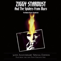 Bowie, David: The Rise and Fall of Ziggy Stardust and the Spiders from Mars Soundtrack (Vinyl)