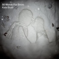 Bush, Kate: 50 Words For Snow