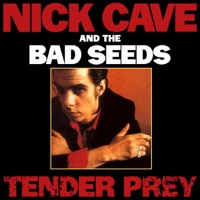 Cave, Nick & The Bad Seeds: Tender Prey (Vinyl)