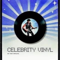 Celebrity Vinyl - Cover Book (Bog)