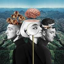 Clean Bandit: What Is Love? (2xVinyl)