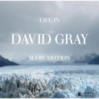 Gray, David: Life in slow motion