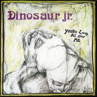 Dinosaur Jr.: You're Living All Over Me (Vinyl)