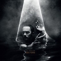 Editors: In Dream (CD)