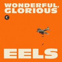 Eels: Wonderful, Glorius (Vinyl)