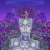 BADU, ERYKAH: NEW AMERYKAH PART TWO