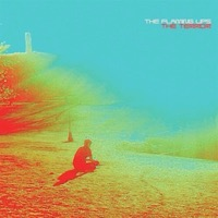 Flaming Lips: The Terror (2xVinyl)