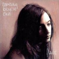 Bombay Bicycle Club: Flaws