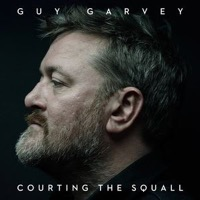 Garvey, Guy: Courting the Squall (Vinyl)
