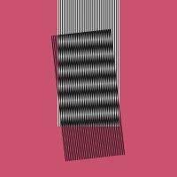 Hot Chip: Why Make Sense? (Vinyl)