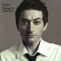 James: Pleased To Meet You (2xVinyl)