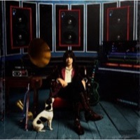 Casablancas, Julian: Phrazes For The Young (Vinyl)