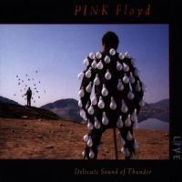 Pink Floyd: Delicate Sound Of Thunder (CD)