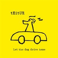 Teitur: Let The Dog Drive Home