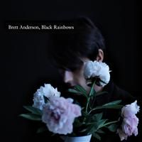 Anderson, Brett: Black Rainbows