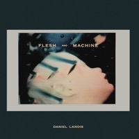 Lanois, Daniel: Flesh and Machine