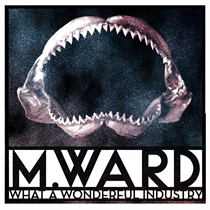 M. Ward: What A Wonderful Industry (CD)