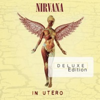 Nirvana: In Utero - 20th Anniversary Box (3xCD/DVD)