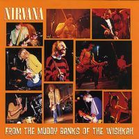 Nirvana: From The Muddy Banks Of Wishkah (2xVinyl)