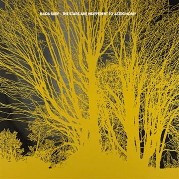 Nada Surf: The Stars Are Indifferent To Astronomy (Vinyl)