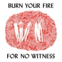 Olsen, Angel: Burn Your Fire For No Witness