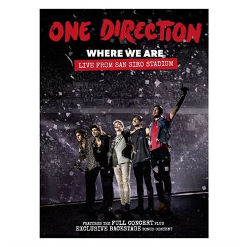 One Direction: Where We Are - Live From San Siro Stadium (DVD)