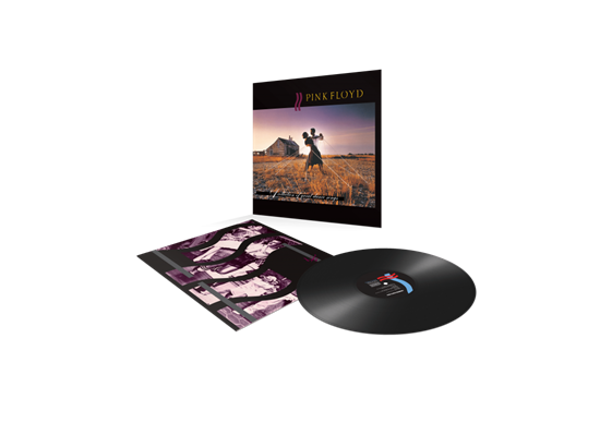 Pink Floyd: A Collection Of Great Dance Songs (Vinyl)