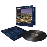 Pink Floyd: A Momentary Lapse Of Reason (Vinyl)