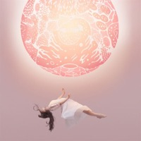 Purity Ring: Another Eternity (Vinyl)