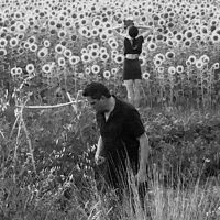 Sun Kil Moon/Jesu: America's Most Wanted