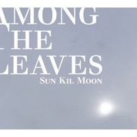 Sun Kil Moon: Among the Leaves