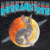 Stevens, Sufjan: Run Rabbit Run