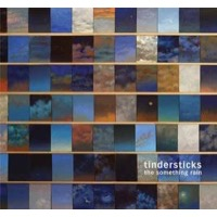 Tindersticks: The Something Rain
