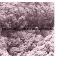 Trentemøller: Into The Great Wide Yonder (Vinyl)