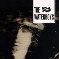 The Waterboys: The Waterboys (Vinyl)