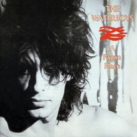 Waterboys, The: A Pagan Place (Vinyl)