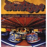 Waterboys, The: Room To Roam (Vinyl)